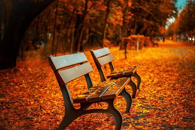 lavice na podzim.jpg